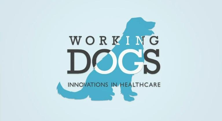 TPT Specials: Working Dogs: Innovations in Healthcare