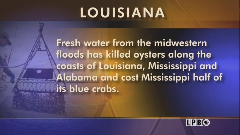 Louisiana: The State We're In: Governor's Race, Campaigning, BESE Election, Seafood