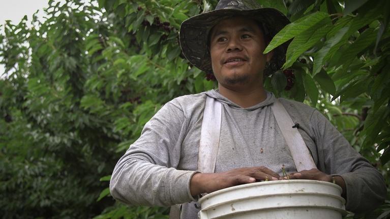 IN Close: Un día en la vida de un trabajador agrícola migrante
