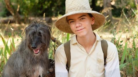 The Durrells in Corfu -- Creatures & Critters