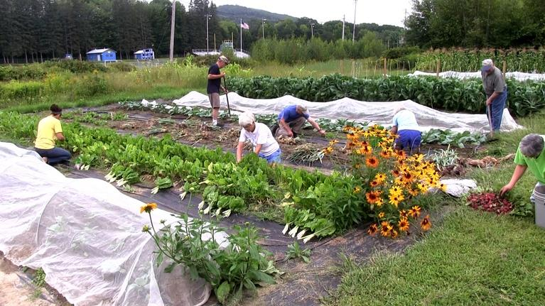 Assignment: Maine: Gardeners Growing Healthy Communities