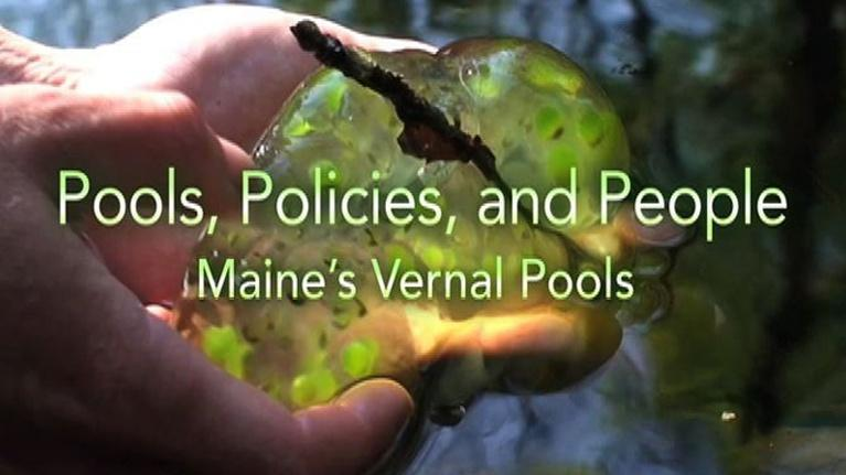 Sustainable Maine: Pools, Policies and People