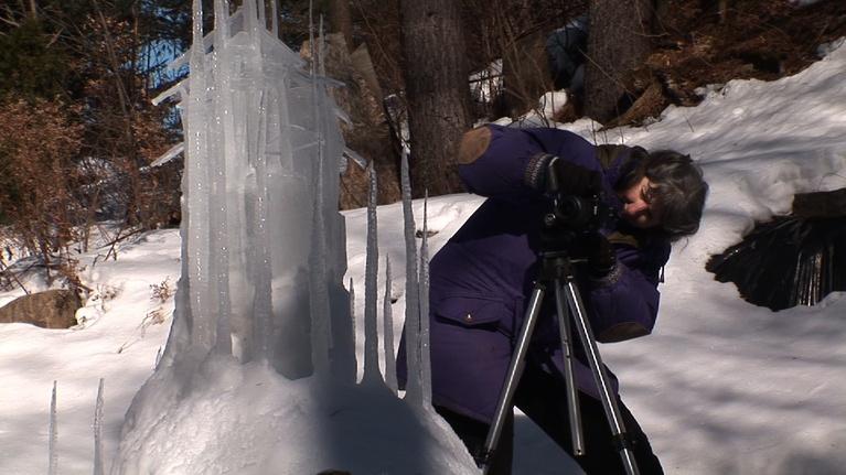 Mountain Lake Journal EXTRA: Sally Smith - Environmental Artist