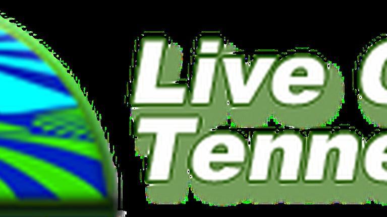 Live Green Tennessee: Live Green Tennessee 501