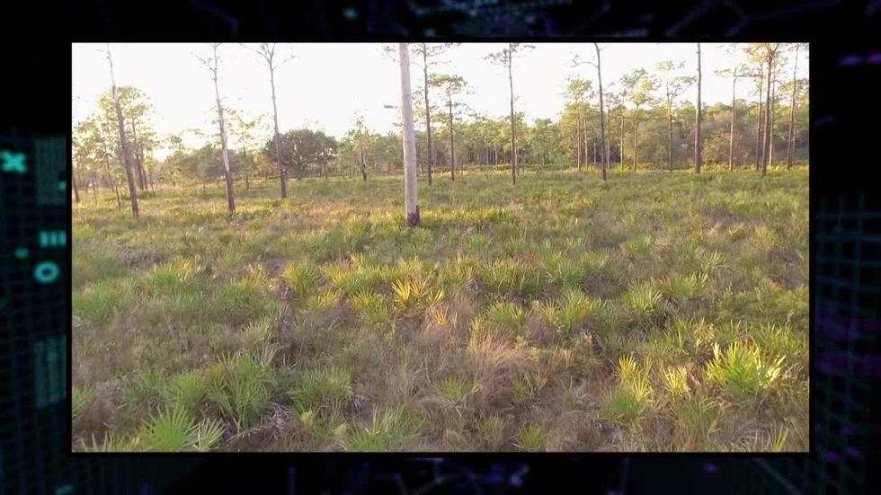 304: Heartwood Preserve image