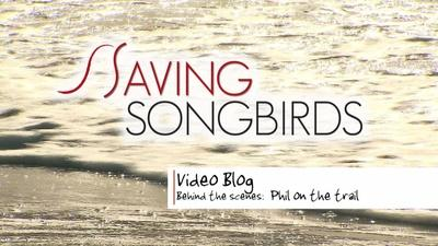 Saving Songbirds | Saving Songbirds | Phil on the Trail