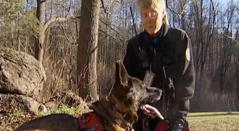 Wildlife Journal: Dog Rangers