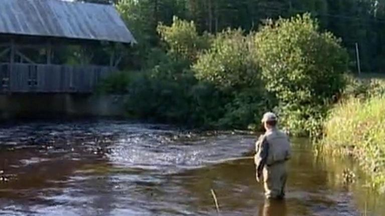 Wildlife Journal: Great NH Trout Streams