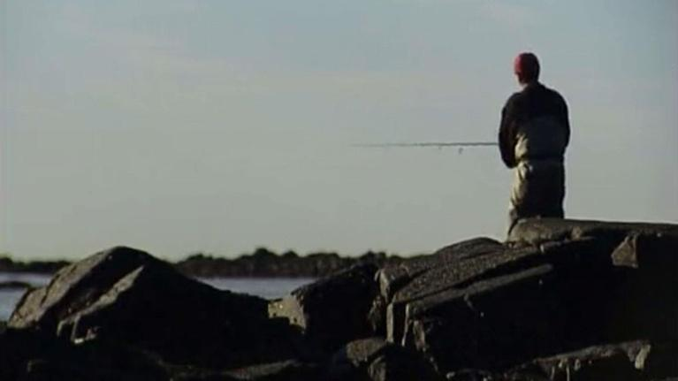 Wildlife Journal: Gone Fishing