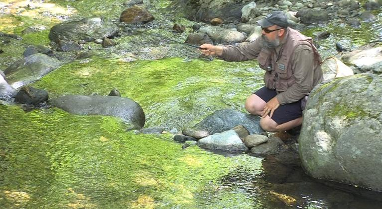 Outdoor Journal: Tenkara | Dead Creek Days |Trail Cutting | Backcountry Ski