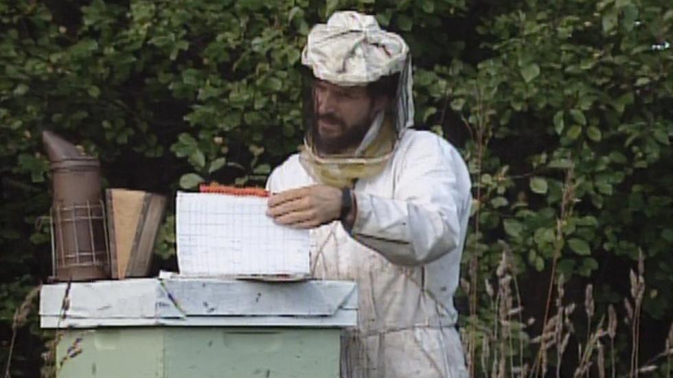 Apples/Beekeeping/Lange image