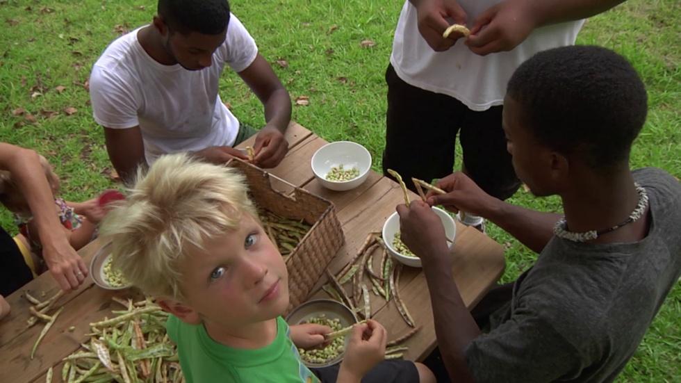 Good Taste Tally: Hands-On Learning Through Farming image