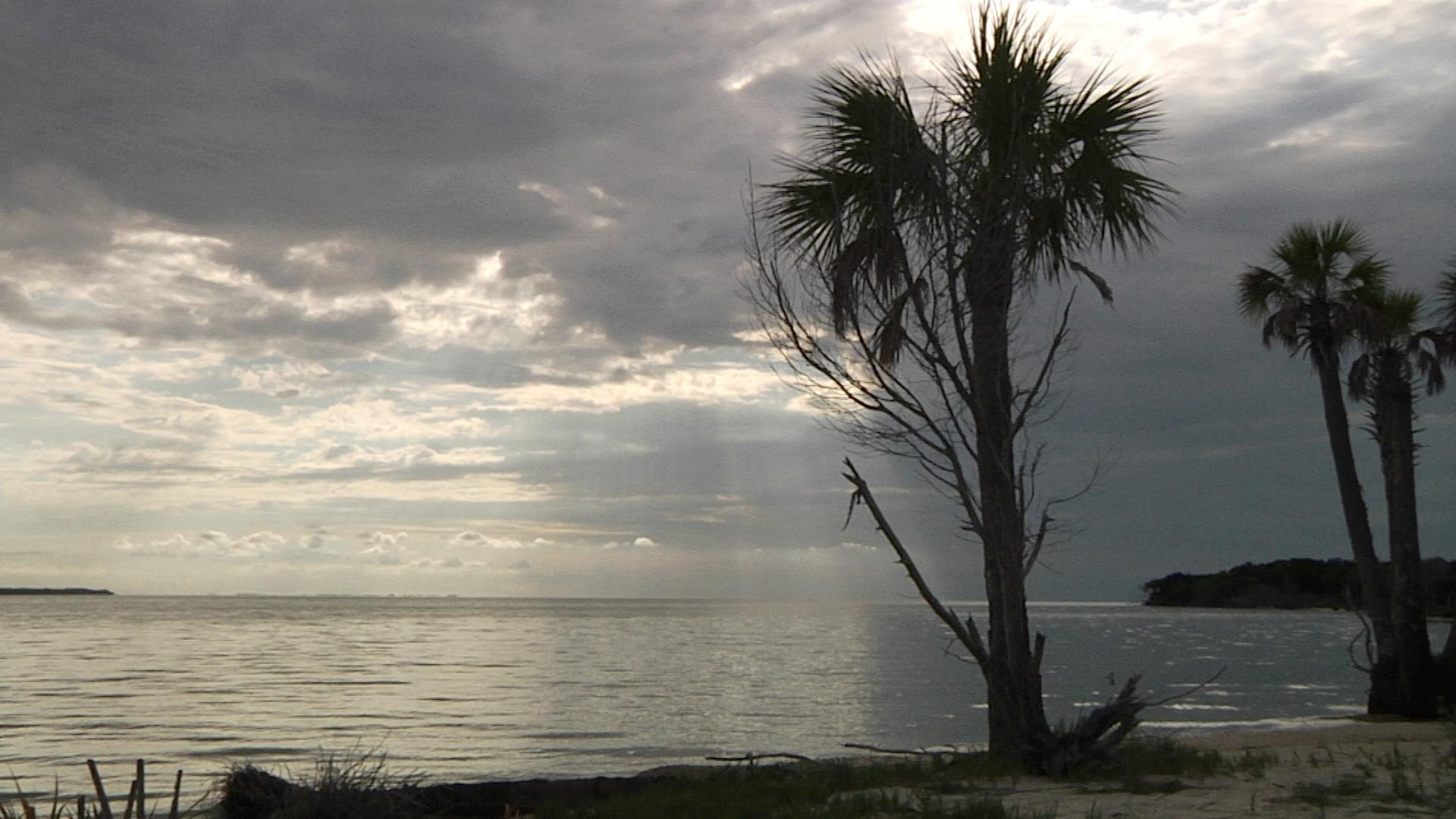 Saint Vincent Island  Florida's Wildest Barrier Island