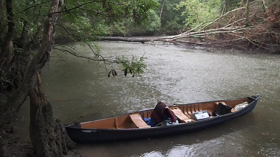 Upper Chipola River Kayak/ Canoe Adventure image