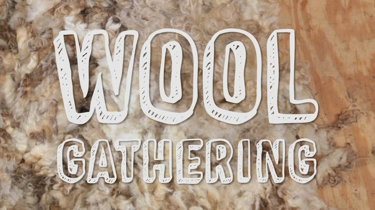 Backyard Industry: Wool Gathering