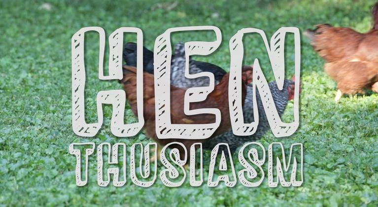 Backyard Industry: Henthusiasm