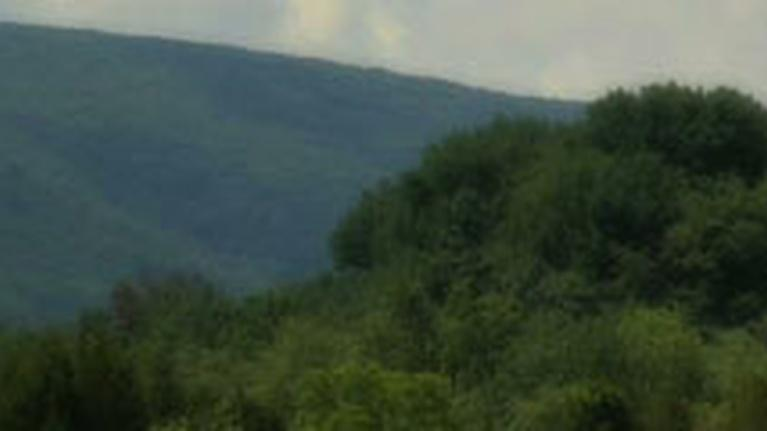 UnCommon Wealth: PA Parks: Cherry Valley National Wildlife Refuge