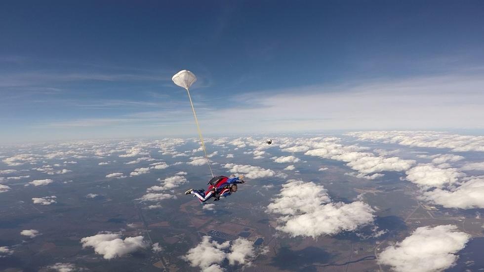 Skydive Palatka image