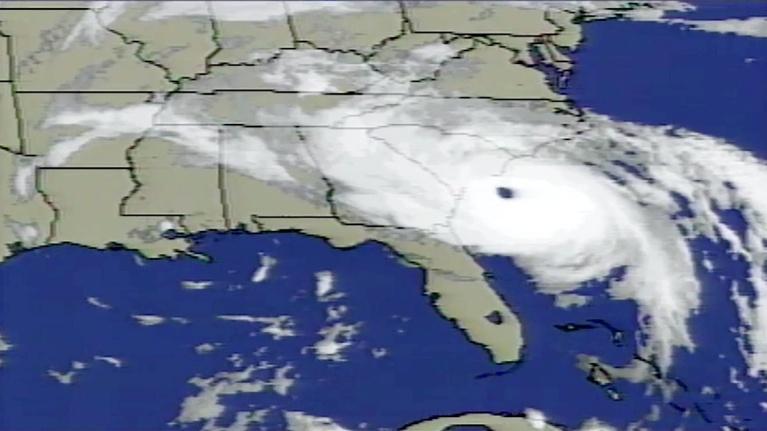 Palmetto Scene: Remembering Hurricane Hugo