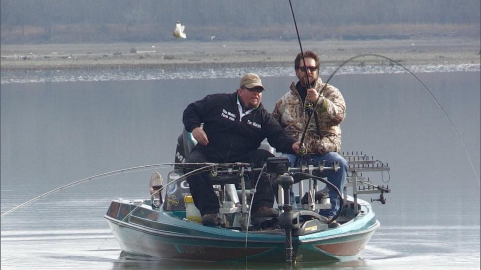 Green River Lake Crappie Fishing image