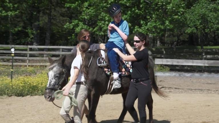 Your Family Pet: Therapeutic Horseback Riding