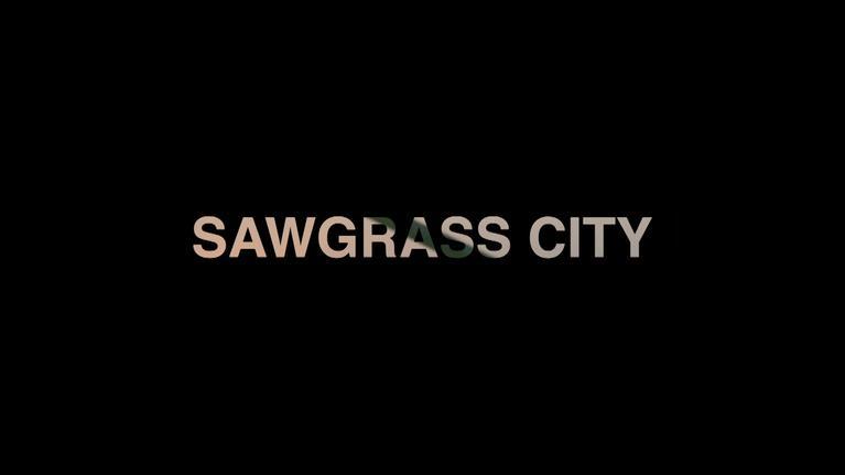 WLRN Documentaries: Sawgrass City