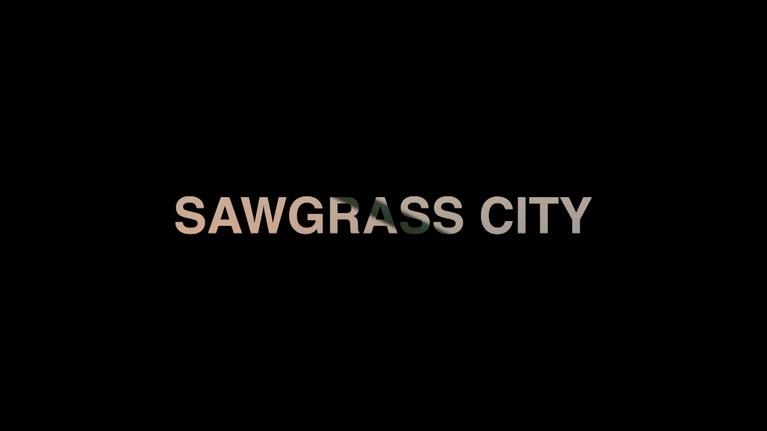 WLRN Documentaries: Sawgrass City