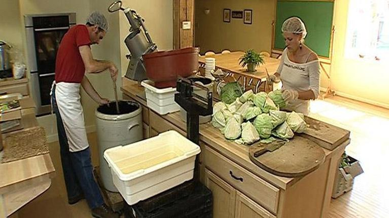 From Farm to Table: From the Cabbage Patch