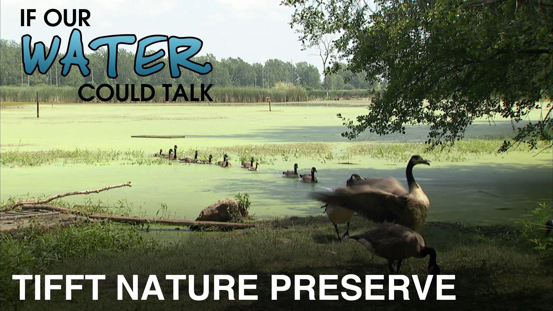 Tiftt Nature Preserve