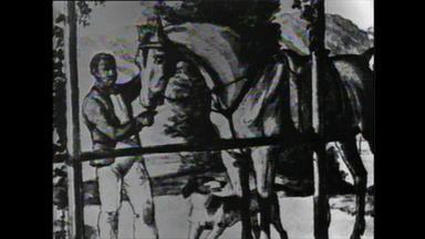 Dynamics of Desegregation: Portrait of a Violent Man