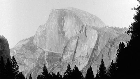 Ansel Adams: Photography- The Incisive Art