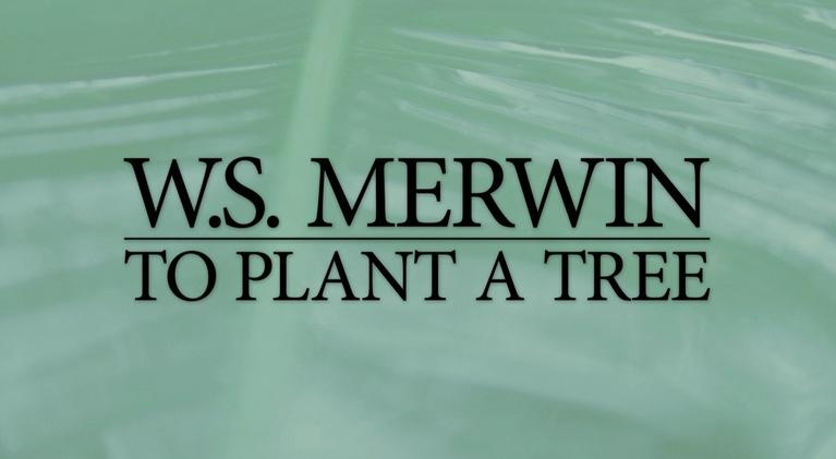 W.S. Merwin: To Plant a Tree: W.S. Merwin: To Plant a Tree Preview