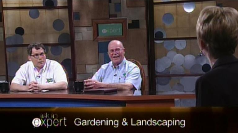 Ask an Expert: Gardening and Landscaping