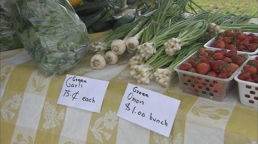 South Madison Farmers Market Has New >> Buy Local South Madison Farmers Market