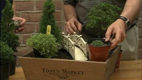 Video Thumbnail: The Wisconsin Gardener Miniature Gardens