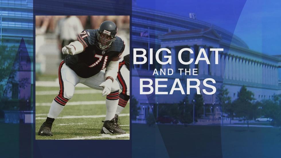 Seahawks Blank Bears 26-0 image
