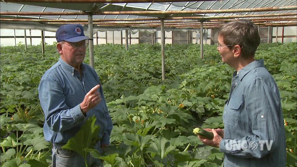 Simpson's Farm Produce image