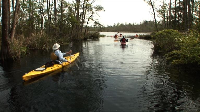 The Fitness Files: Coastal Kayak Touring Company