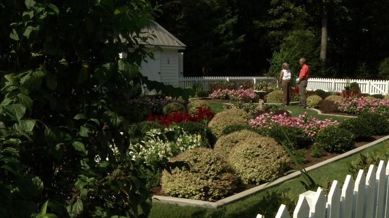 In the Garden: Going Pro & Other Gardening Need-to-Know
