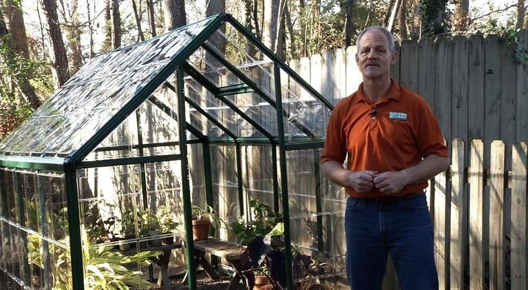 In the Garden: Greenhouse Growing