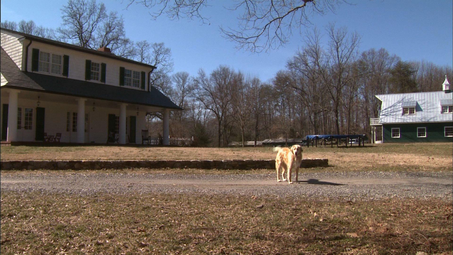 Red Dog Farm Animal Rescue Network