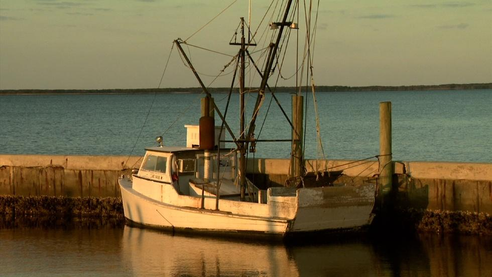 Taste of Core Sound; Harkers Island image