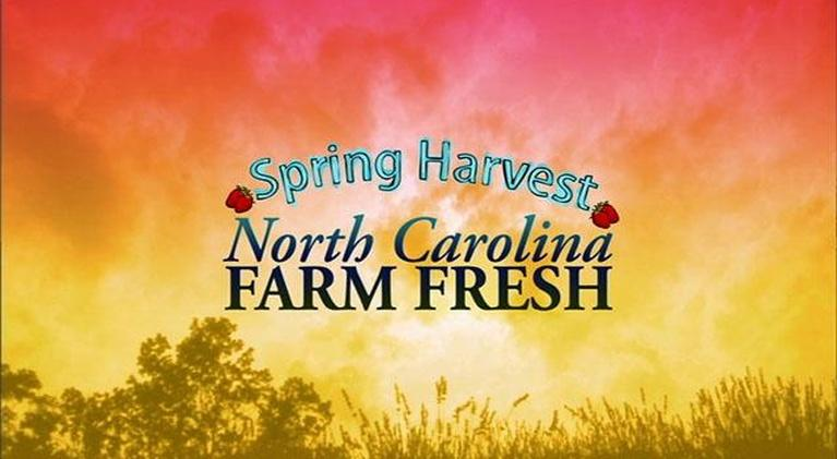 North Carolina Farm Fresh: Spring Harvest NC Farm Fresh