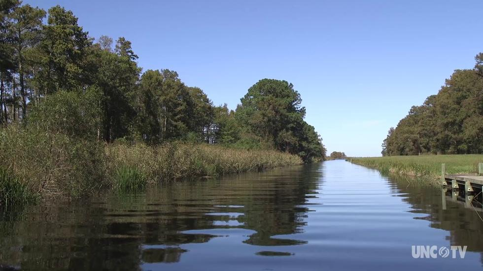 NC Science Now: Saving Lake Mattamuskeet image