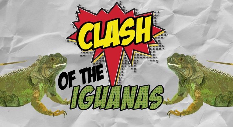 Math Mess: Clash of the Iguanas