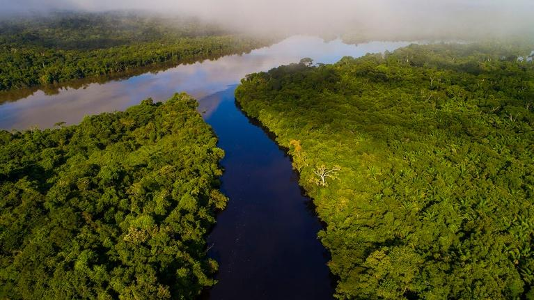 Rivers of Life: The Amazon