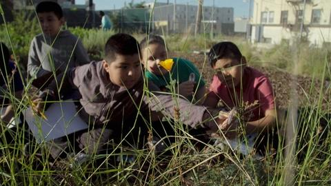 Earth Focus -- Students in High-Density Neighborhood Reconnect with Nature
