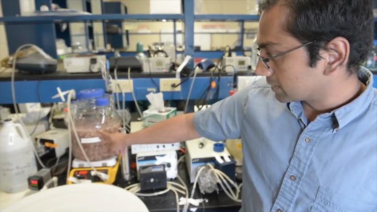 SciTech Now: More efficient models for environmental sustainability
