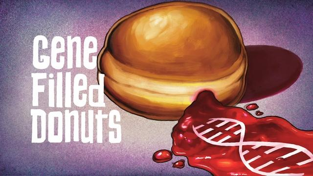 The Gene Explained | Gene Filled Donuts