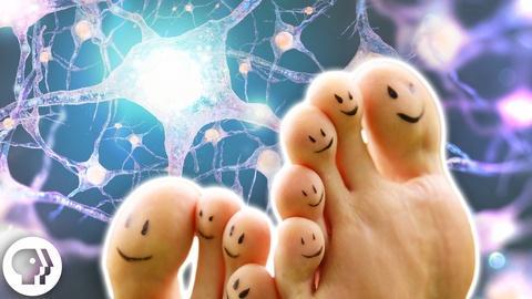 BrainCraft -- Wiggle Your Big Toe